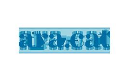 diari-ARA-logo